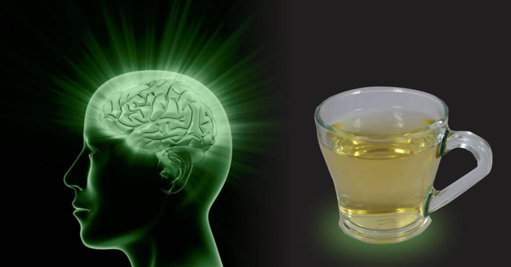 Green tea brain health