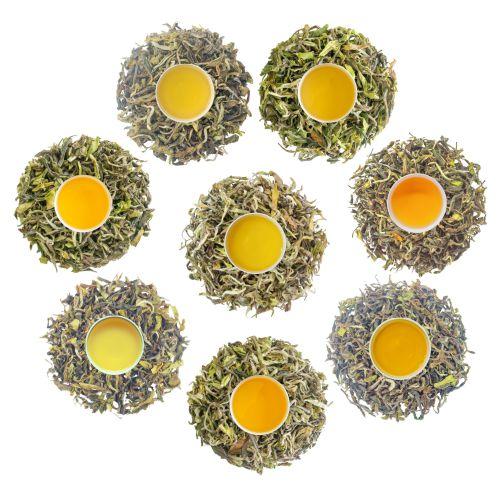 gopaldhara first flush tea