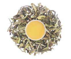 premium white tea