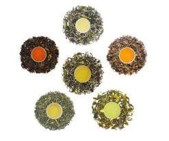tea starter pack