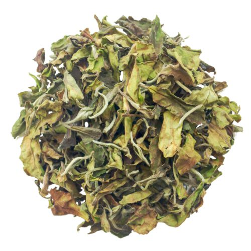 fresh white tea