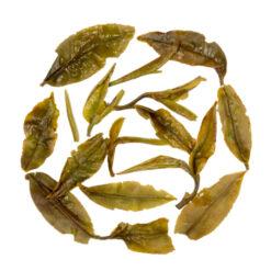 darjeeling white teas